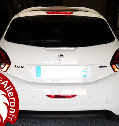 becquet pour Peugeot 208