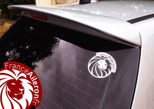 Becquet Feline pour Peugeot 307