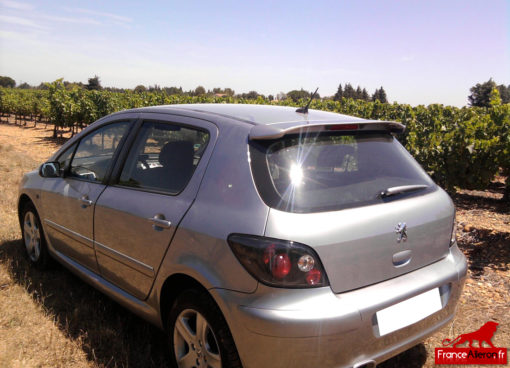 Becquet Sport pour Peugeot 307 : Photo envoyée par un acheteur
